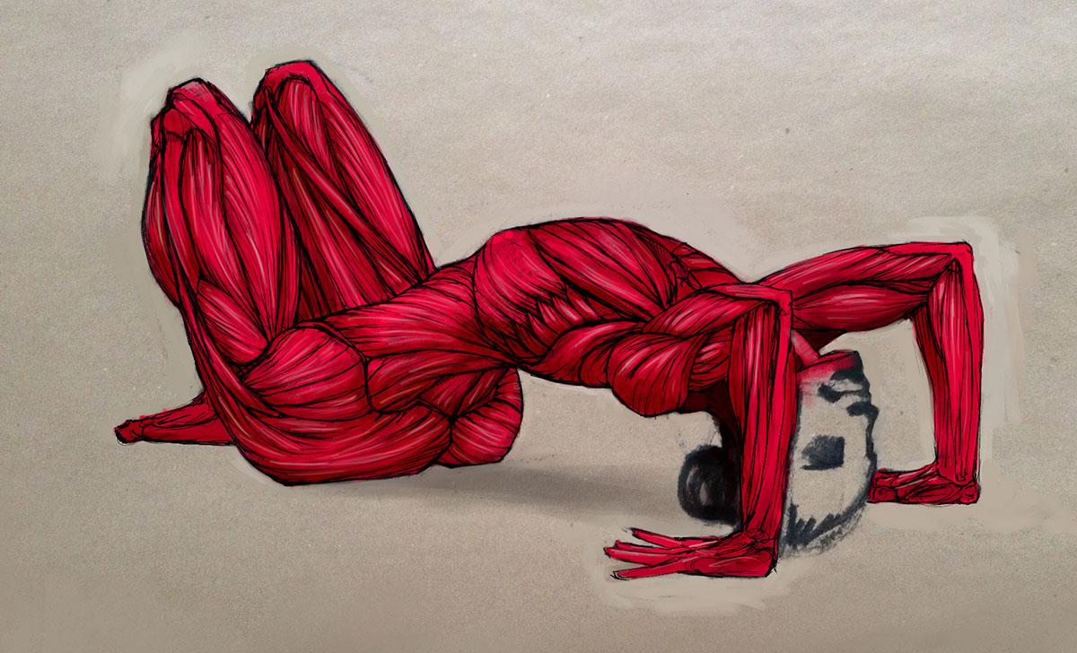 Sketching under the skin